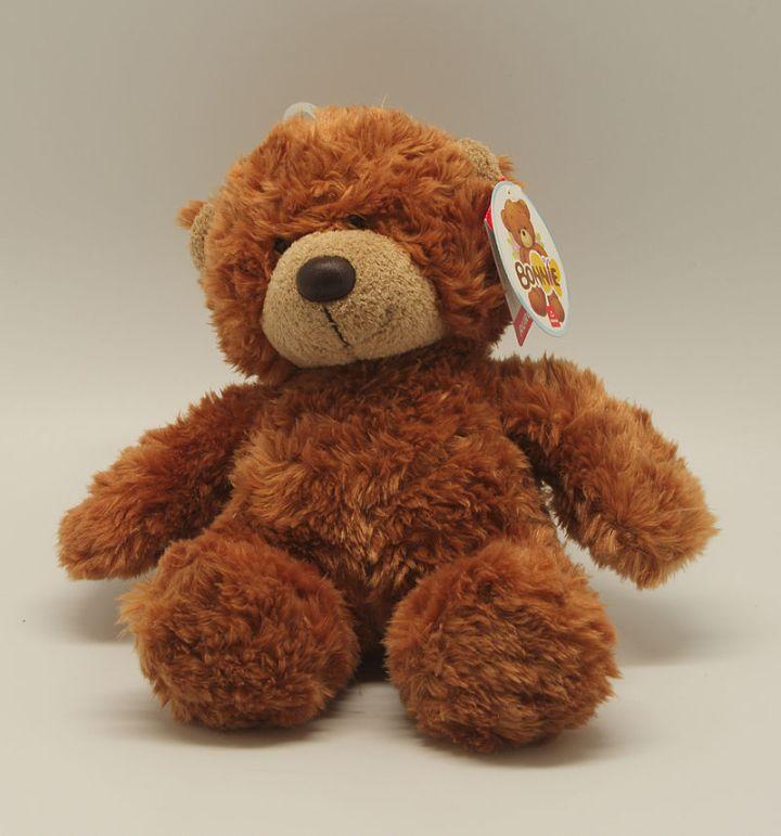 La curiosa storia del Teddy Bear (o orsacchiotto di peluche): sai perché si chiamacosì?